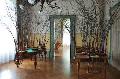 Zimmerwälder / Chamber Forests